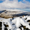 2. The Cheviot from summit of Hedgehope Hill