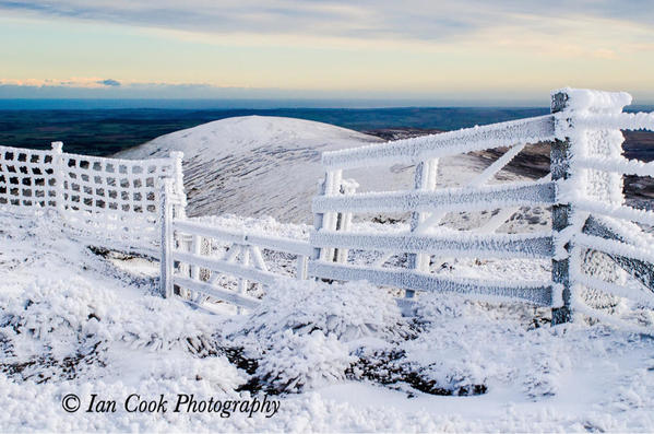 3. Hedgehope Hill from The Cheviot
