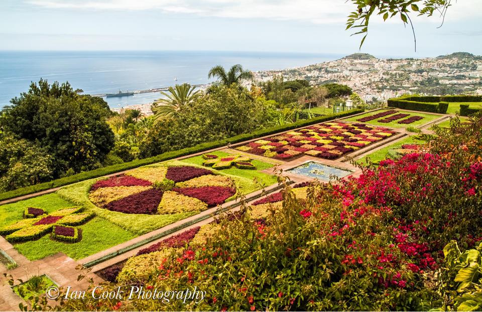 Botanical garden madeira opening hours garden ftempo for Botanical gardens hours today
