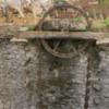 Persian Water wheel (sakia), Rajasthan, India