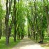 18 a-walk-in-one-of-the-parks-in-minsk-belarus