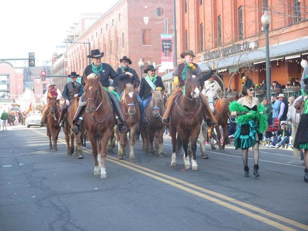 St. Patricks Day - Horses