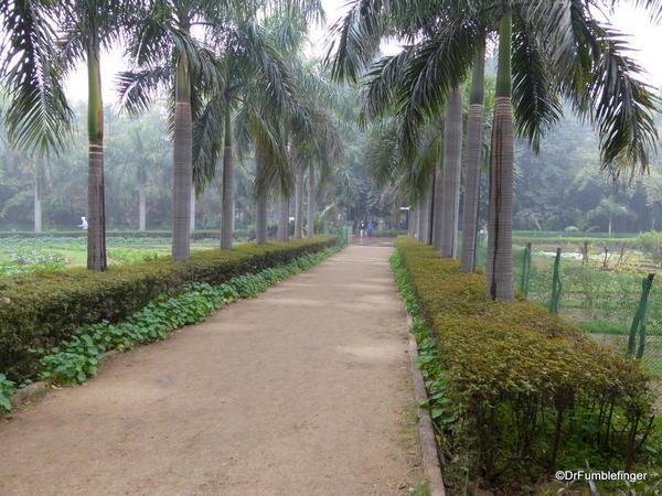 07 Lodhi Gardens, Delhi 02-2016