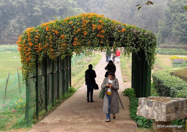 08 Lodhi Gardens, Delhi 02-2016 (2)
