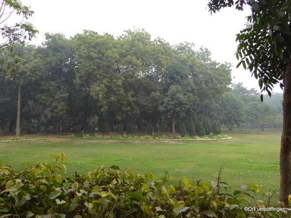 08 Lodhi Gardens, Delhi 02-2016 (7)