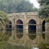 Lodi Gardens, Delhi, Athpula.