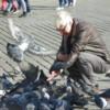 Krakow Birdman: Main Square, Krakow, Poland