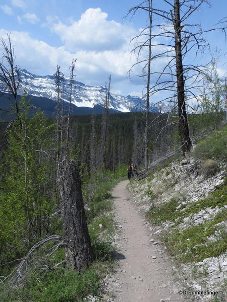 04 Lake Minnewanka Hike (11)