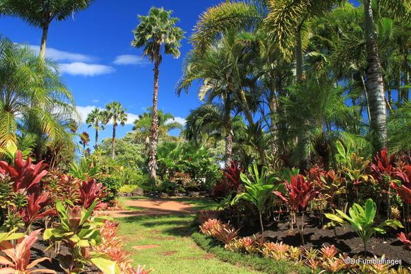 Dole Plantation 10-2014 (36)