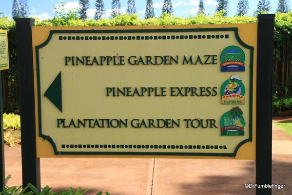 Dole Plantation 10-2014 (85)