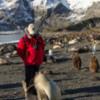 Antarctica_weaner-3
