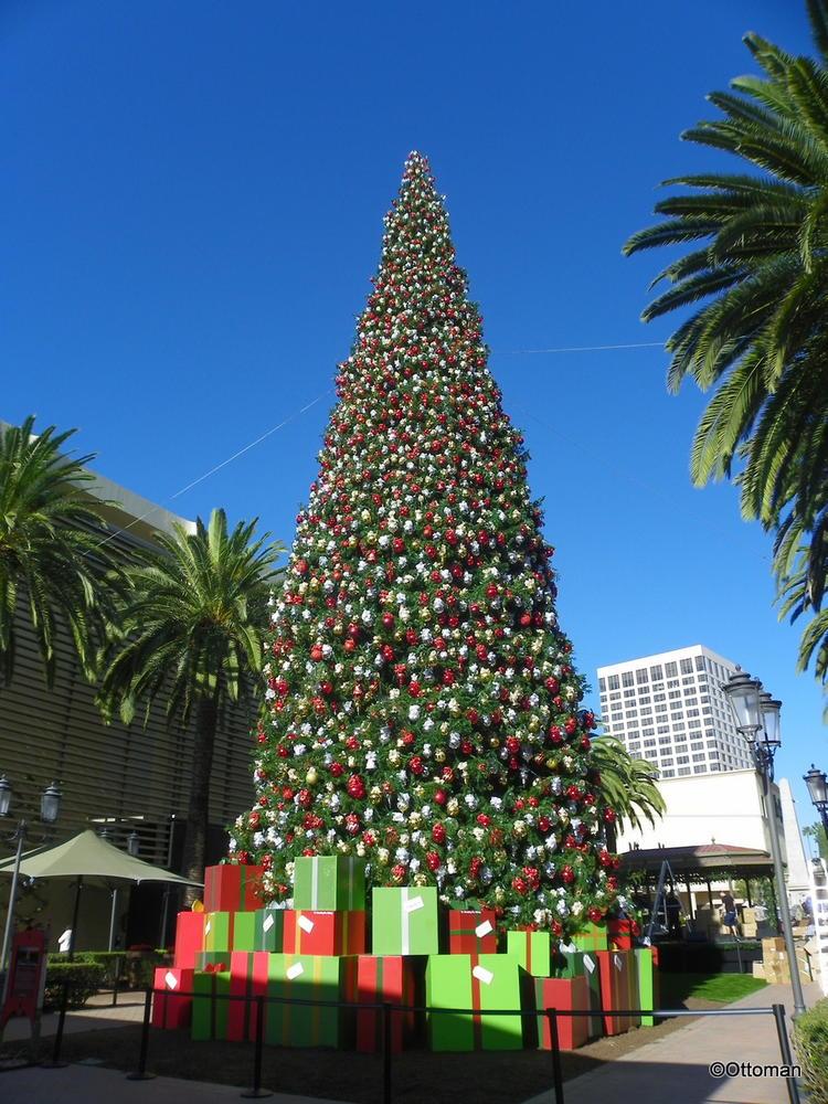 Christmas tree at fashion island 56
