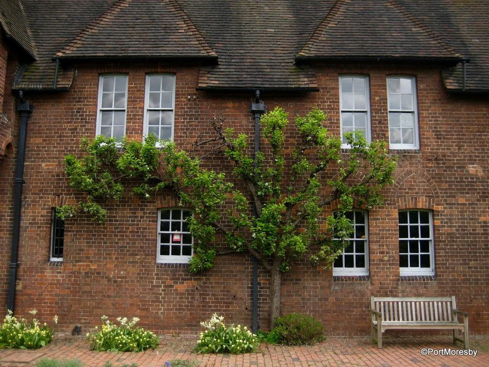 William morris at home red house travelgumbo for Morris home