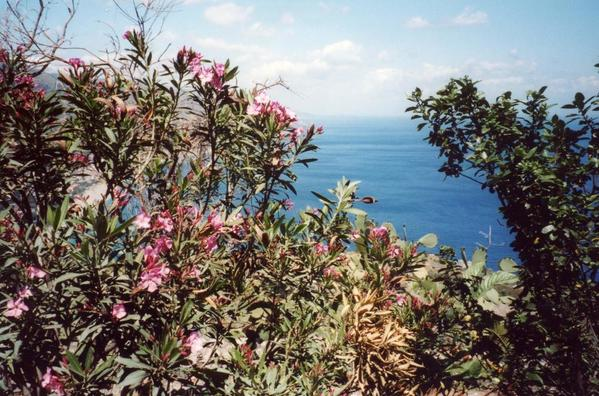 View from Taomina Sicily