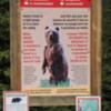 Moraine Lake Rockpile Trail -- Banff National Park