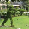 Jallianwala Bagh, Amritsar