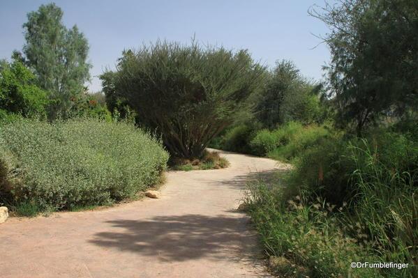 20 Al Ain Zoo (52)