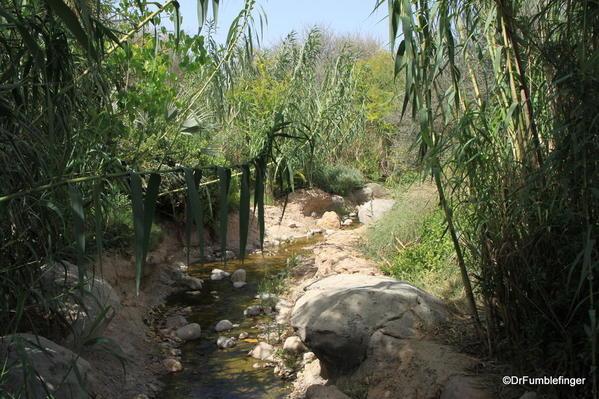 22 Al Ain Zoo (53)
