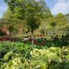 Walled Garden, Alnwick, Northumberland