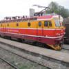 train31