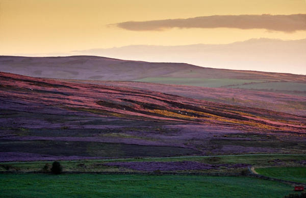 Moorland sunset.