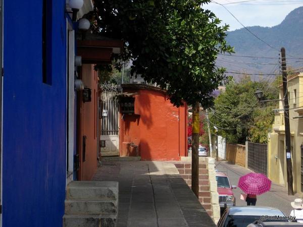 Xochimilco25