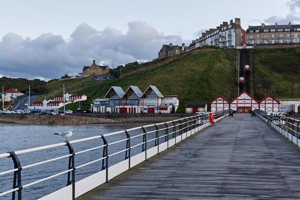 Pier seagull hillside 5 1