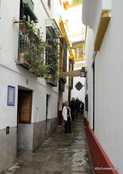 An Evening walk in Santa Cruz, Seville (44)