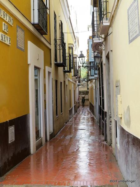 An Evening walk in Santa Cruz, Seville (66)