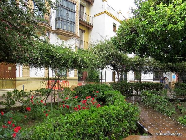 An Evening walk in Santa Cruz, Seville (92)