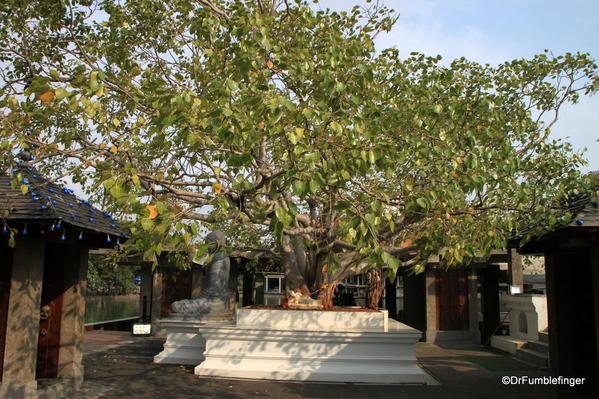 17 Seema Malaka Temple, Colombo (17)