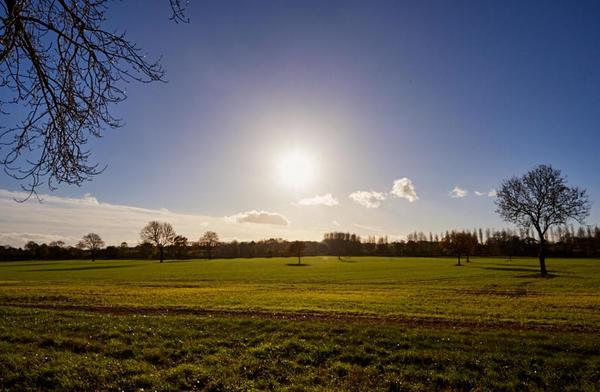 Grasslands and autumn sun.