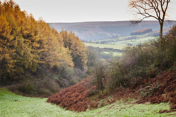 Clay Bank valley, Chop Gate area.