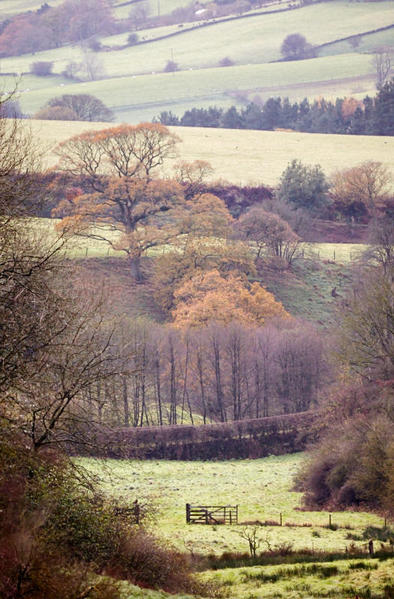Clay Bank Valley.