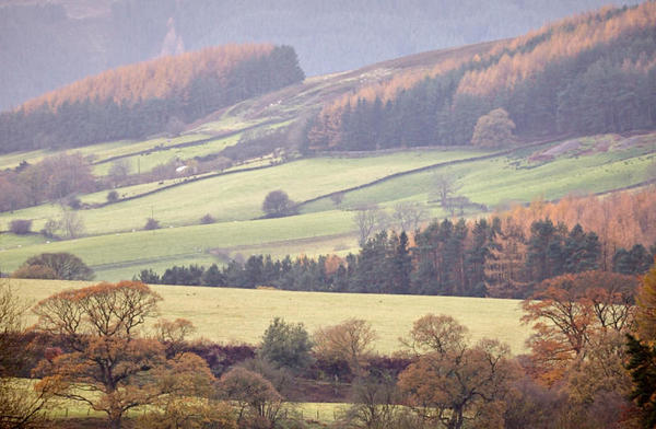 Clay Bank Valley and fields.