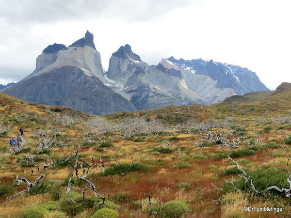 Paines Massif, Torres Del Paine (16)
