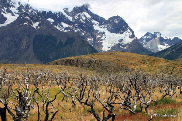 05 Paines Massif, Torres Del Paine (89)