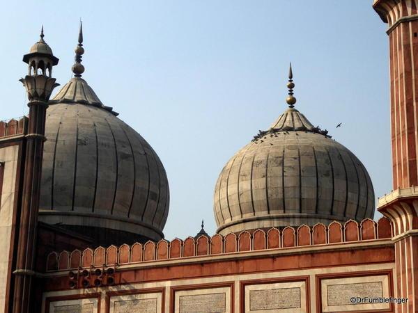 28 Jama Masjid, Delhi (153)