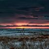 Northumberland Sunrise 8