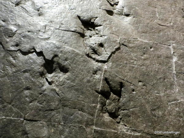 012 Royal Tyrrell Museum, Drumheller Dinosaur footprints