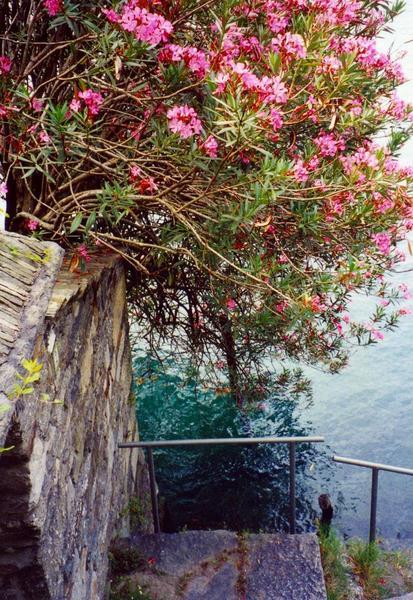 Lake Orta Stone Steps
