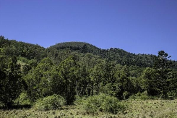 Scenic Rim Trail, Queensland