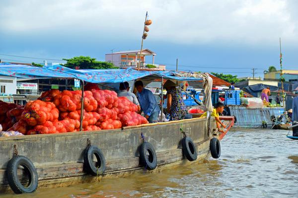 Mekong Delta 53