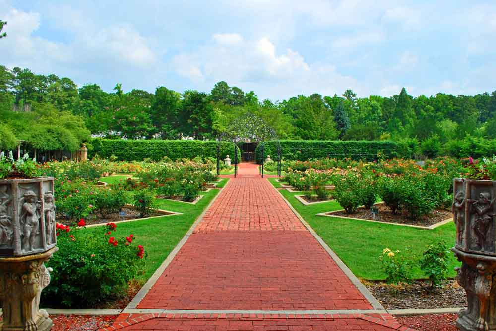 June 5, 2018: Birmingham\'s Botanical Glory | TravelGumbo