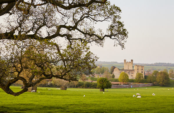 Duncombe park grounds and Helmsley castle;