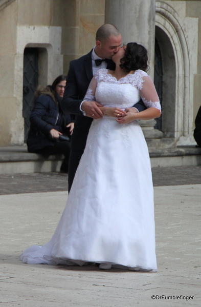 Weddings on Wawel Hill (28)