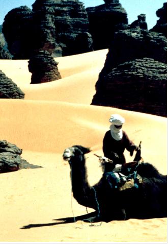Sahara 12