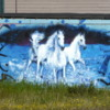 Whitehorse street art