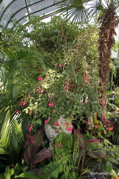 10a Niagara Parks Floral Showcase