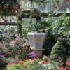 Niagara Parks Floral Showhouse, Niagara Falls